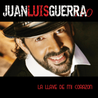 Something Good Juan Luis Guerra