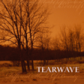 Free Download Tearwave Under the Milky Way (The Church Cover) Mp3