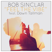 Feel the Vibe (Radio Edit) [feat. Dawn Tallman] Bob Sinclar
