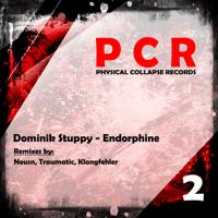 Endorphine (Klangfehler Remix) Dominik Stuppy MP3