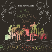Wish I Knew You (Live from Tipitina's, New Orleans, La / 2016) The Revivalists song