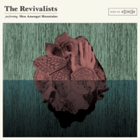 Wish I Knew You The Revivalists