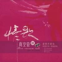 美麗的神話 Julia Lee & 李紹繼 MP3
