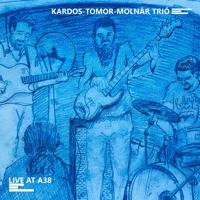 Turkish Song (Live) KARDOS-TOMOR-MOLNÁR TRIÓ MP3