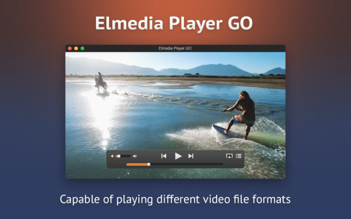 1_Elmedia_Player_GO.jpg