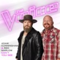 Free Download Adam Cunningham & Red Marlow Can't You See (The Voice Performance) Mp3