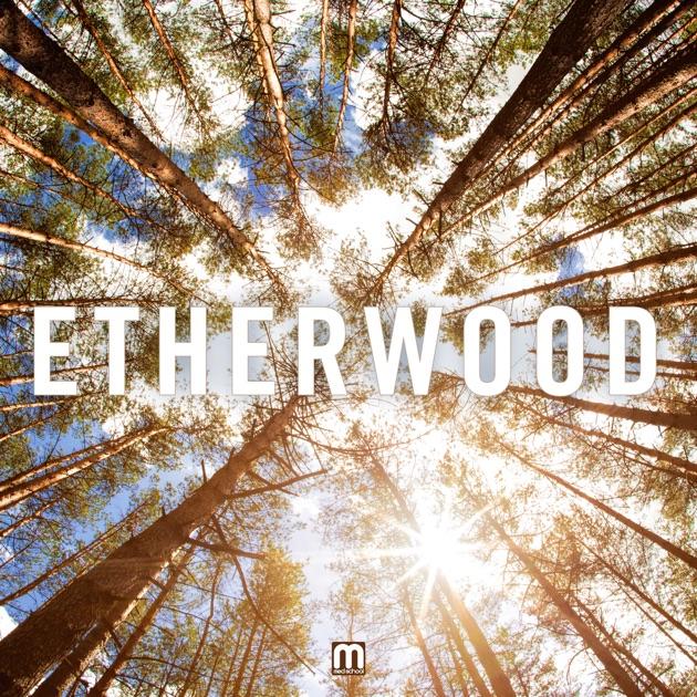 For My Sins (Etherwood Remix) - Jess Mills