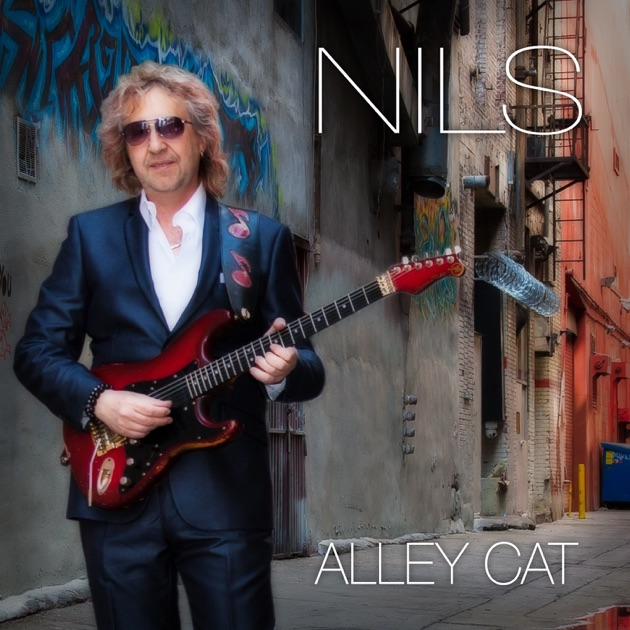Alley Cat by Nils