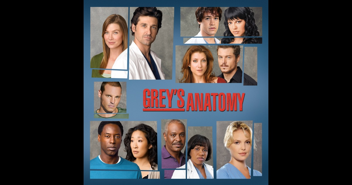 Greys Anatomy Season 11 Download Subtitles - LTT