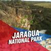 POLIMERA VARALAXMI - Jaragua National Park Tourism Guide アートワーク