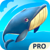 LLC It Works - Whale or Shark Pro アートワーク