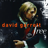 Nothing Else Matters David Garrett