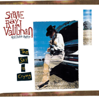Life By the Drop Stevie Ray Vaughan & Double Trouble