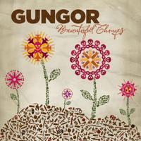 Beautiful Things Gungor MP3
