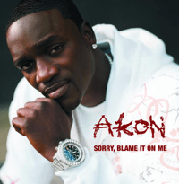 Sorry, Blame It On Me (Main) Akon song