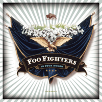 Best of You Foo Fighters
