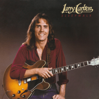 Sleepwalk Larry Carlton
