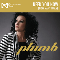 Need You Now (How Many Times) [Instrumental] Plumb song