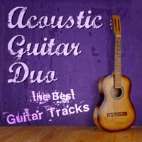 I Will Survive Acoustic Guitar Duo