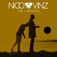 Am I Wrong Nico & Vinz