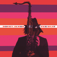 Don't You Worry 'Bout a Thing Boney James MP3