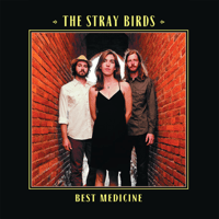 Stolen Love The Stray Birds