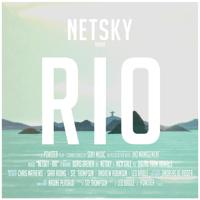 Rio (feat. Digital Farm Animals) Netsky song