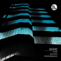 Remembrance Biome