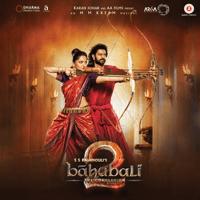 Shivam Kaala Bhairava MP3
