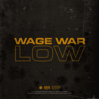 Low Wage War