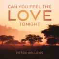 Free Download Peter Hollens Can You Feel the Love Tonight (From