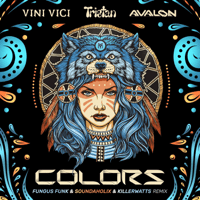 Colors (Fungus Funk Remix) Vini Vici, Tristan & Avalon MP3