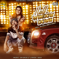 Half Window Down (feat. Dr. Zeus & Neetu Singh) Ikka song