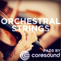 Orchestral Strings Pad (Key of D) Coresound Pads
