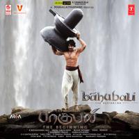 Siva Sivaya Potri Vaikkam Vijaya Lakshmi, Maragadamani & M. M. Keeravaani MP3