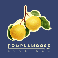 Lovefool Pomplamoose song