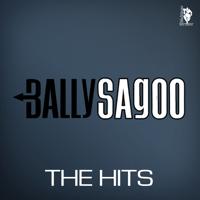 Tum Bin Jiya Udhas Bally Sagoo & Shabnam Majid MP3