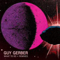 What to Do (&Me Remix) Guy Gerber MP3