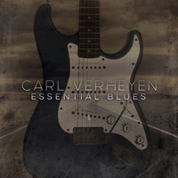 Dodging the Blues Carl Verheyen song