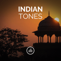 Indian Drone Tone in C# (Db) myNoise