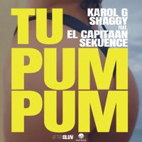 Tu Pum Pum (feat. El Capitaan & Sekuence) Karol G & Shaggy