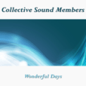 Free Download Collective Sound Members Wonderful Days Mp3
