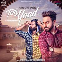 Teri Yaad (feat. Parmish Verma) Goldy Desi Crew MP3