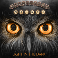 I Wouldn't Change a Thing Revolution Saints