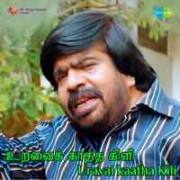 Pakkathil Vanthalenna S. P. Balasubrahmanyam & S. Janaki MP3