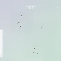 Kite Lycoriscoris
