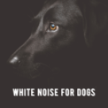 Free Download Pet Therapy White Noise for Dogs: Block Out Barking Mp3