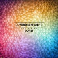神奇草原(DJ Version) DJ何鹏 & 蓝琪儿