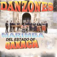 Villa Flores Danzones song