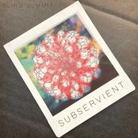 Subservient Blind Summit MP3